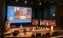 Roul/World Forum/OPCW/ Plenary